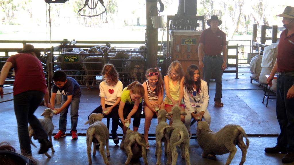 Farm Show, Caversham Wildlife Park, Whiteman, Western Australia